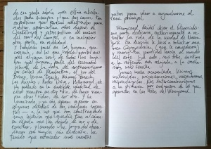 Diario Pepo M 3